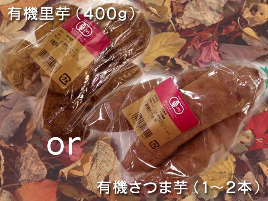 20121016_imo.jpg