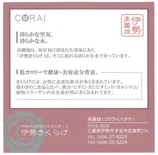 20130117_04.jpg